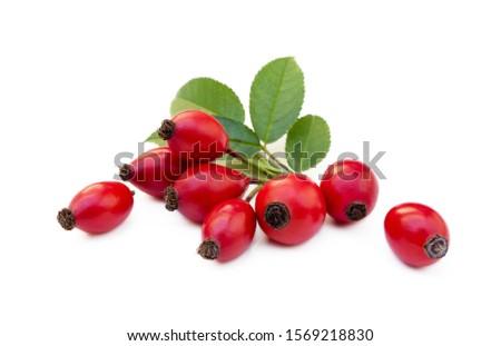 Ripe rose hip isolated on white background #1569218830