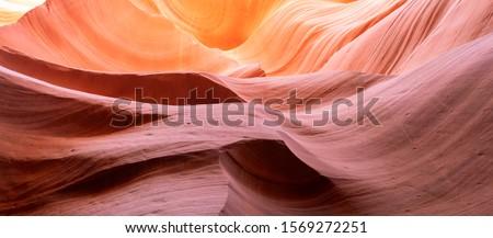 Canyon Antelope. Grand Canyon, Slot Canyon - Abstract Background collection #1569272251