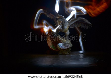 eagle with seashells on a light background