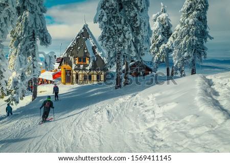 Winter ski resort with wooden lodges near ski piste. Snow covered pine trees and sporty skiers on the ski slope, Poiana Brasov ski resort, Transylvania, Romania, Europe #1569411145