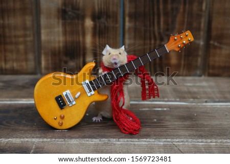 Сute mouse plays guitar, sings. Fun pet fond of music. Talented animal: home musician. Musical mouse celebrate. Mouse rock star on stage gives concert. Postcard with mouse. Talent, song. Celebration #1569723481