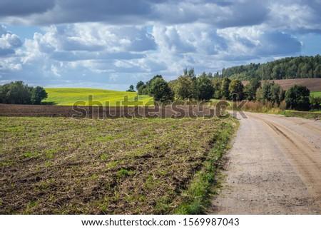 Field road in Glaznoty, small village in Masuria region of Poland #1569987043