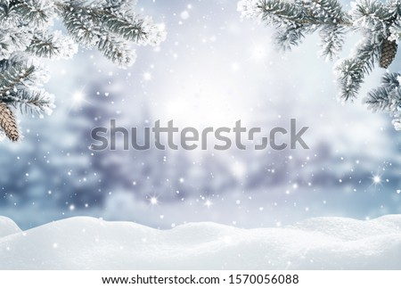 Merry Christmas and happy new year greeting card. Winter landscape with snow .Christmas background with fir tree branch and cones  Royalty-Free Stock Photo #1570056088