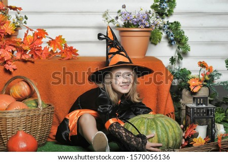 Portrait of girl in witch costume and small pumpkin. #1570056136