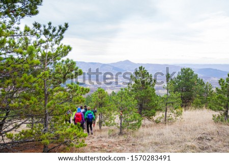 Group of active people with backpack walking through the forest. Hiking. Adventure. Healthy lifestyle. #1570283491