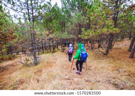 Group of active people with backpack walking through the forest. Hiking. Adventure. Healthy lifestyle. #1570283500