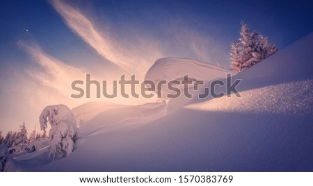 Amazing athmospheric Landscape. winter scenery at sunset. instagram filter. postcard. Snow covered tree under sunlight. Sunlight sparkling in the snow. instagram filter. winter nature background #1570383769
