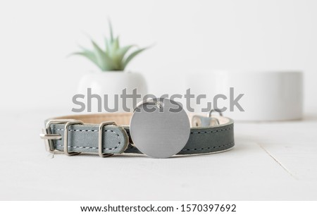 Blank silver round pet tag with gray collar on white background, dog tag mockup Royalty-Free Stock Photo #1570397692