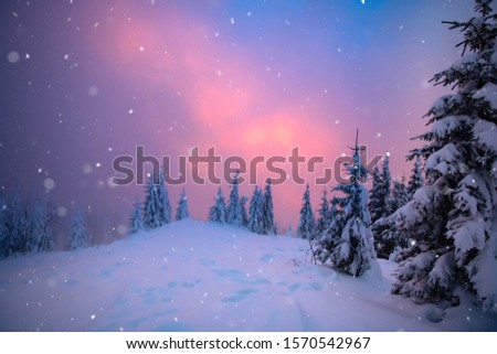 Christmas and New Year background with winter trees in mountains covered with fresh snow - Magic holiday background #1570542967
