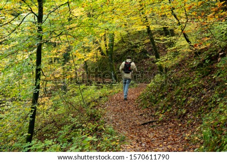 A man walks with a backpack on a trail winding through a forest. Turns right, turn left. Trees, green and autumnal coloured leaves. #1570611790