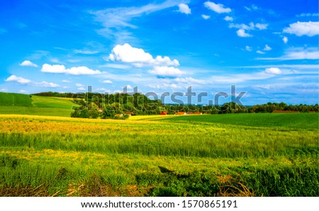 Summer rural country field landscape. Summer farm field landscape. Rural farm meadow in summer. Summer farmland field landscape #1570865191