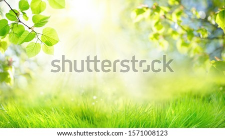 Spring summer background with frame of grass and leaves on nature. Juicy lush green grass on meadow in morning sunny light outdoors, copy space, soft focus, defocus background. #1571008123