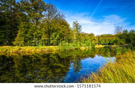 Forest river water reflection landscape. River forest scene. Forest river reflection. Forest river water #1571181574