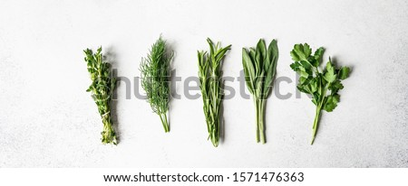 Bunches of fresh raw herbs - rosemary, thyme, dill, parsley and sage on a textured background. Top view. Copy space  Royalty-Free Stock Photo #1571476363