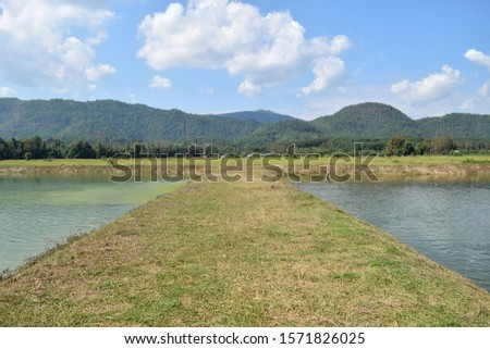 this pic shows earth way in fish farm with pond mountain and sky background, aquaculture concept