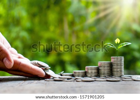 Small tree that grows at various levels of coins, financial concepts, saving money and investing. #1571901205