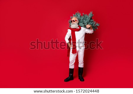 Full length body size view of his he nice well-dressed handsome virile masculine confident gray-haired man in pullover sweater boots carrying green tree isolated on bright vivid shine red background #1572024448