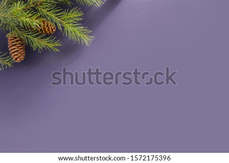 Lilac background for a letter to Santa Claus. Background for a Christmas card. Decorated with fir cones, fir branches. #1572175396