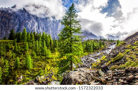 Mountain valley river stream in clouds. Cloudy sky over mountain river valley. Mountain river stream valley view. Mountain river stream landscape #1572322033
