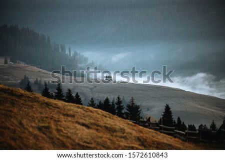 Autumn foliage and fog. Misty mountains with evergreen trees.Creative,vintage concept Royalty-Free Stock Photo #1572610843