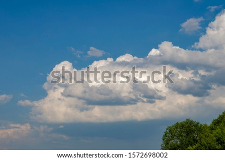 Fluffy volumetric clouds in the blue sky and treetops #1572698002