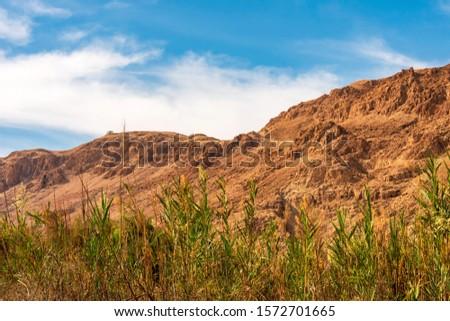 Mountains in the Dead Sea region. Desert landscape in Qumran National Park.  #1572701665