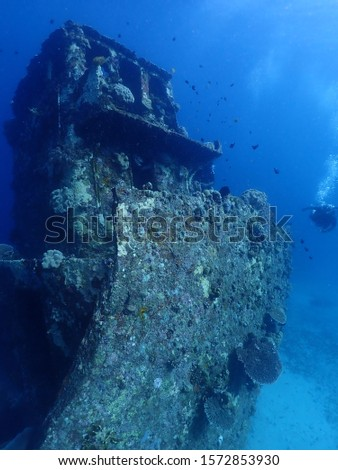 Kokopo,East New Britain / Papua New Guinea - September 1 2018 : Scuba diver diving in Papua New Guinea, Rabaul Town  #1572853930