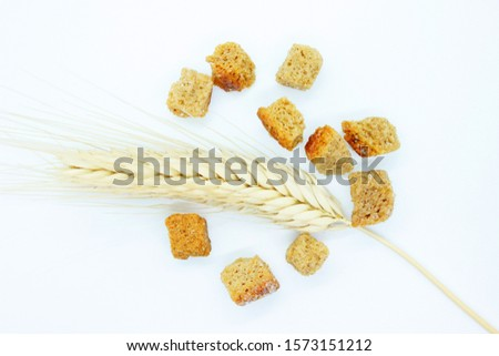 Rye crackers and rye spike located on a white background #1573151212