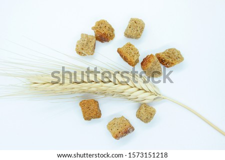 Rye crackers and rye spike located on a white background #1573151218