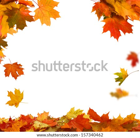 Isolated Autumn Leaves  #157340462