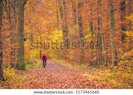 nice senior woman riding her mountainbike on the autumnal forest trails near Stuttgart, beautiful warm colors  #1573465660