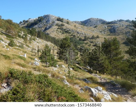 Right on the coast the mountain Biokovo in Croatia rises to the highest peak Sveti Jure at 1762 meters and is part of the mountain range of the Dinarides. #1573468840