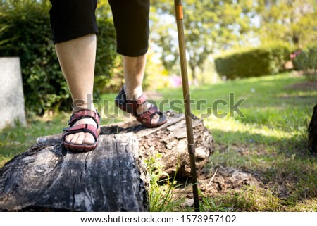Asian senior woman balancing on wooden stump,healthy elderly people legs walking on the log timber at park,old people cross log with walking stick,physical exercise,training leg muscles, body balance  #1573957102