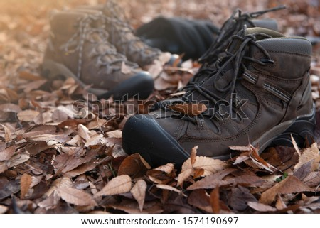 Hiking equipment. Hiking shoes with autumn leaves #1574190697