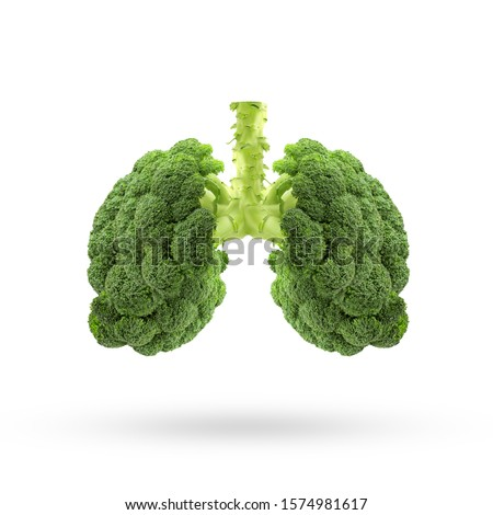 Conceptual image of green broccoli  shaped like human lungs, Green broccoli shaped in human lungs. Conceptual image,Human lungs. Respiratory system. Healthy lungs. Light in the form of a  vegetable #1574981617