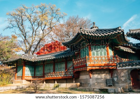 Changdeokgung Palace at autumn in Seoul, Korea #1575087256