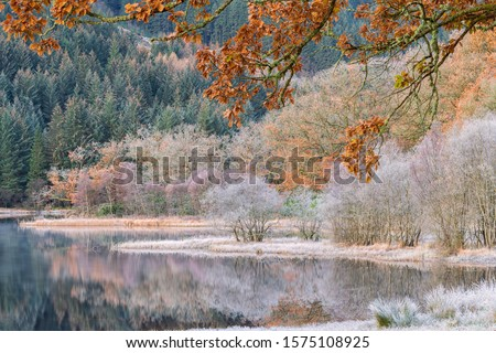 A frosty cold morning for sunrise at Loch Ard, Scotland. Autumn leaves and trees in orange and white colour with frost and still reflections on the water