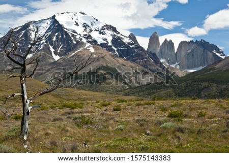 View of the steep peaks of the Torres del Paine granite mountains, Torres del Paine National Park, Magallanes Region, Patagonia, Chile, South America, Latin America, America #1575143383