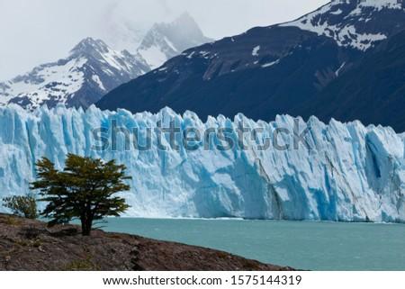 Ice of the Perito Moreno Glacier, Lago Argentino, Santa Cruz region, Patagonia, Argentina, South America, Latin America, America #1575144319