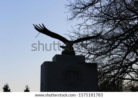 Cemetery North York dusk everning #1575181783