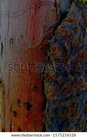 These pictures are mean to the nature of space of cracked of bark and effected by termites the result is amazing characters