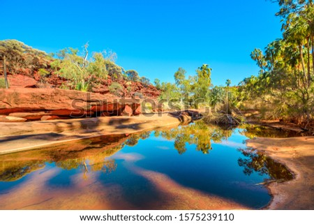Red Cabbage Palm and rugged sandstone cliffs reflected on permanent waterhole in heart of Palm Valley, dry season in Finke Gorge National Park. Outback Safari in Northern Territory, Central Australia. Royalty-Free Stock Photo #1575239110