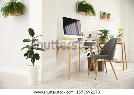 Modern workplace in room decorated with green potted plants. Home design #1575692173