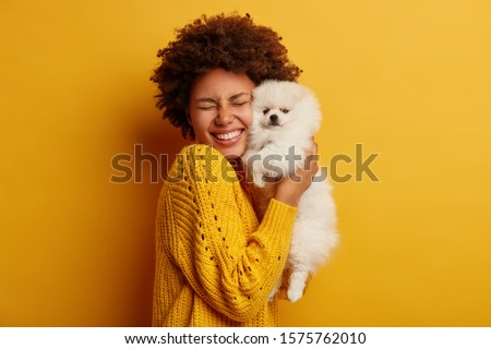 Pleased happy Afro girl gets lovely puppy, plays and embraces four legged friend with love, stands against yellow background, wears knitted jumper. Woman hugs Pomeranian spitz. Humans and dogs #1575762010