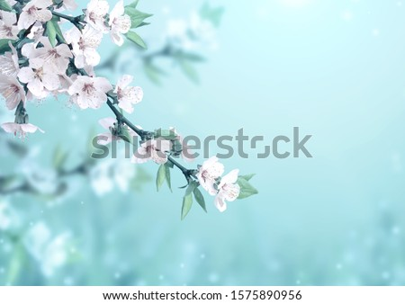 Magical scene with cherry flowers of white color and magic sparks. Beautiful nature spring background. Photo toned in light blue color. Copy space for text