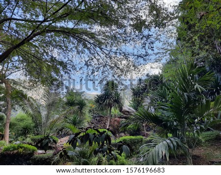 The image of a beautiful natural scenery in the natural park of Uthai Thani Province, Thailand.