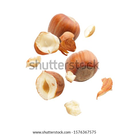 Falling hazelnuts on white background #1576367575