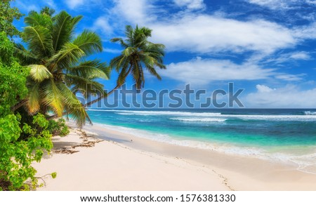 Paradise Sunny beach with palms and turquoise sea.  Summer vacation and tropical beach concept.   #1576381330