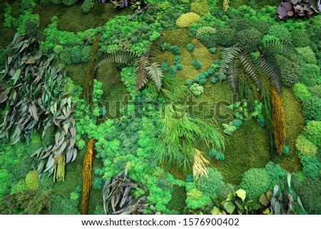 a fragment of green phytowall from stabilized plants with moss