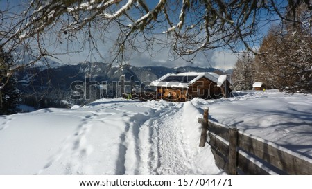 Mountain hut in the snowy forest #1577044771